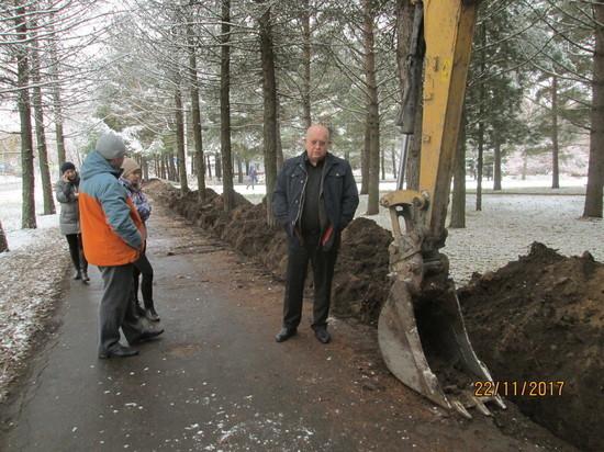 Корни почти двух сотен деревьев повредили в Пущино